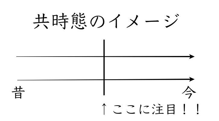 共時態のイメージ